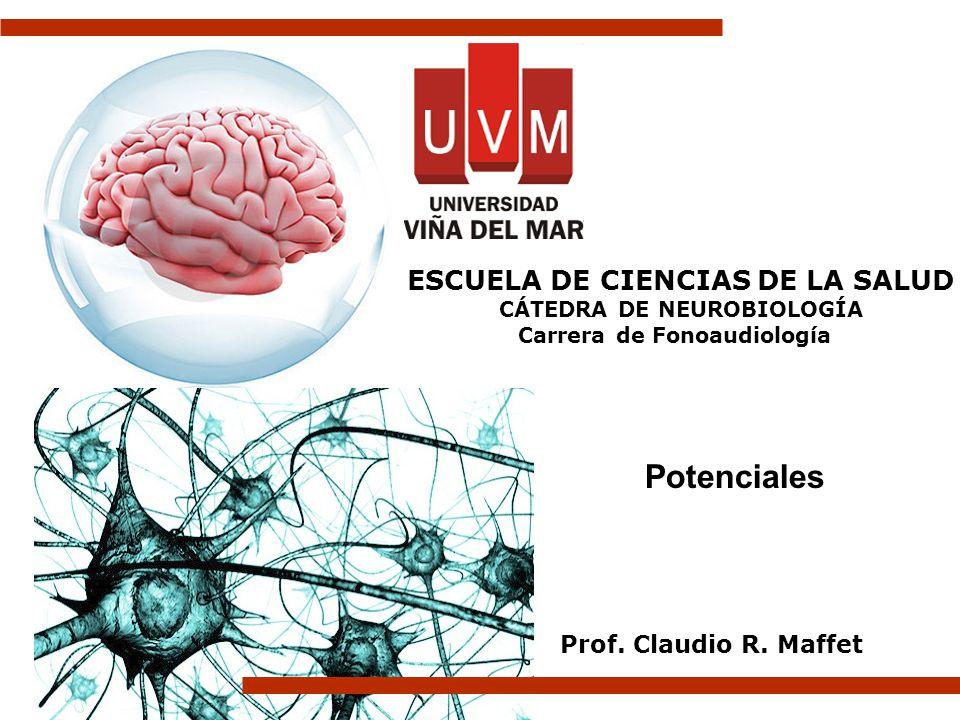 Potenciales ESCUELA DE CIENCIAS DE LA SALUD Prof. Claudio R. Maffet