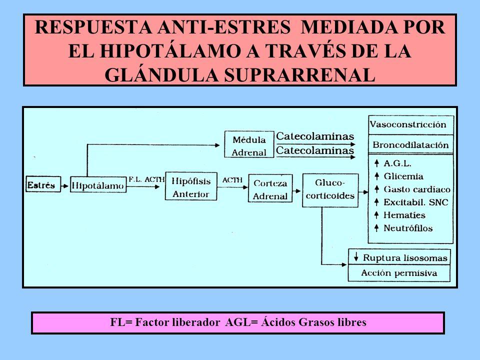 FL= Factor liberador AGL= Ácidos Grasos libres