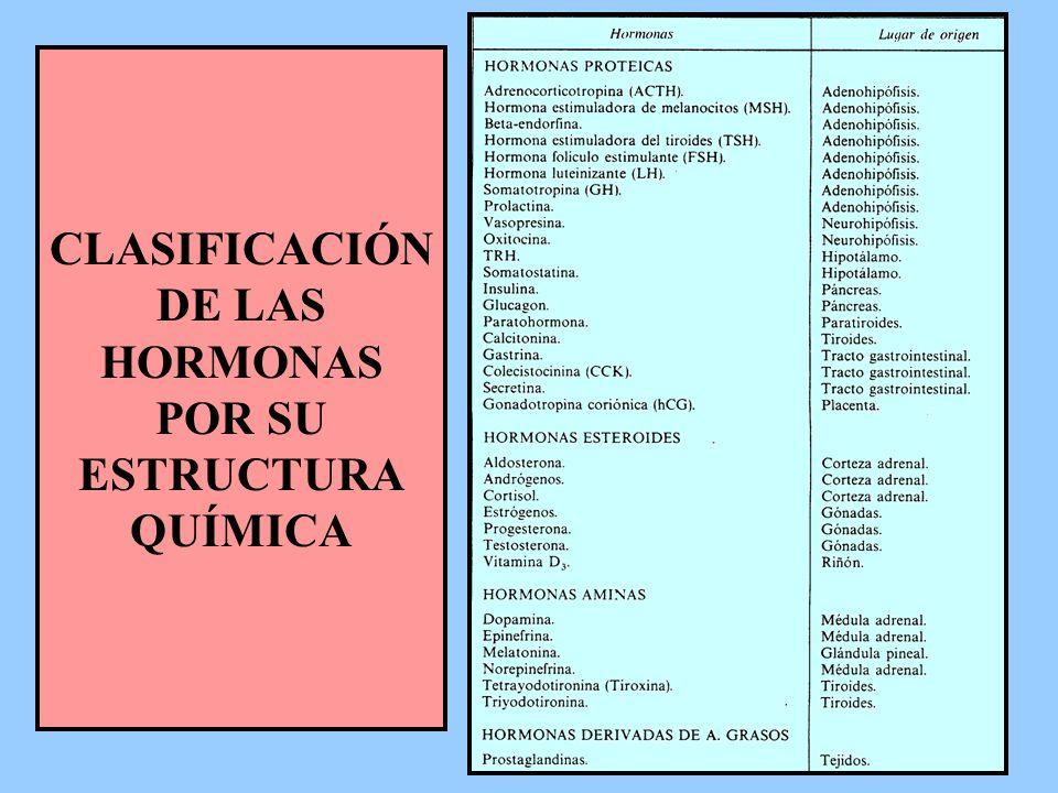 CLASIFICACIÓN DE LAS HORMONAS POR SU ESTRUCTURA QUÍMICA