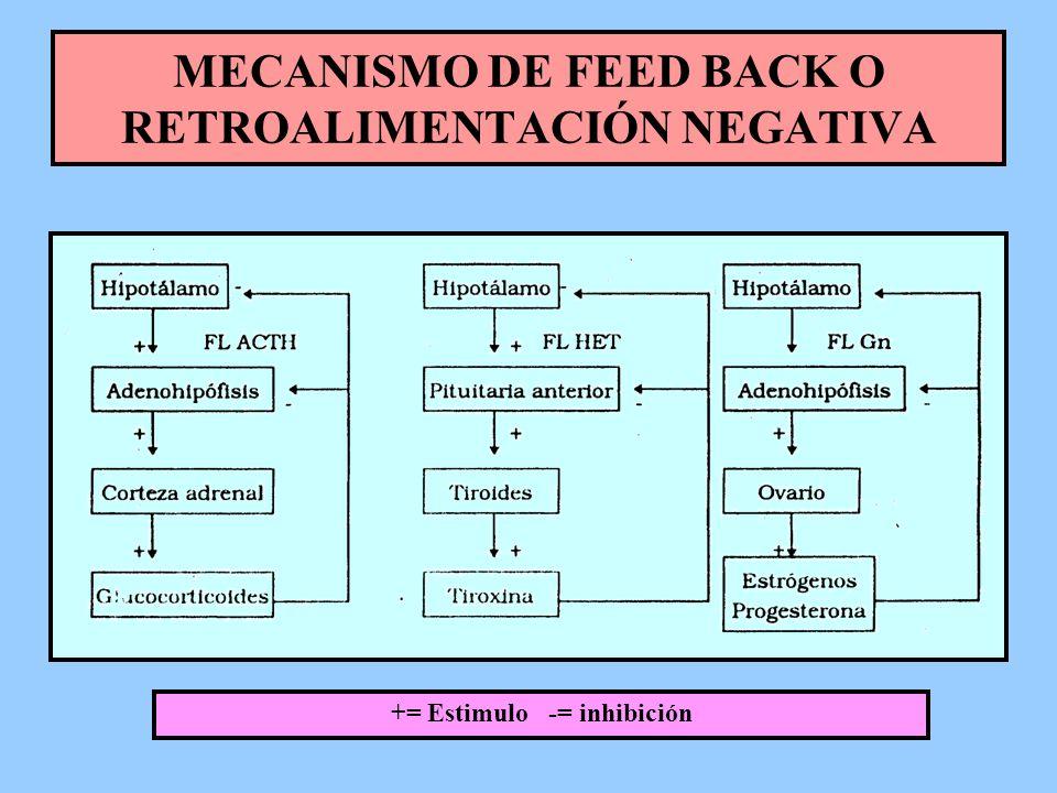 MECANISMO DE FEED BACK O RETROALIMENTACIÓN NEGATIVA