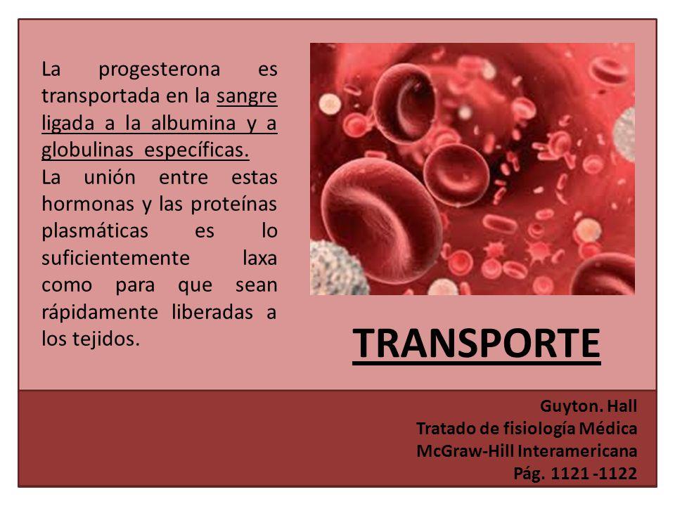 La progesterona es transportada en la sangre ligada a la albumina y a globulinas específicas.