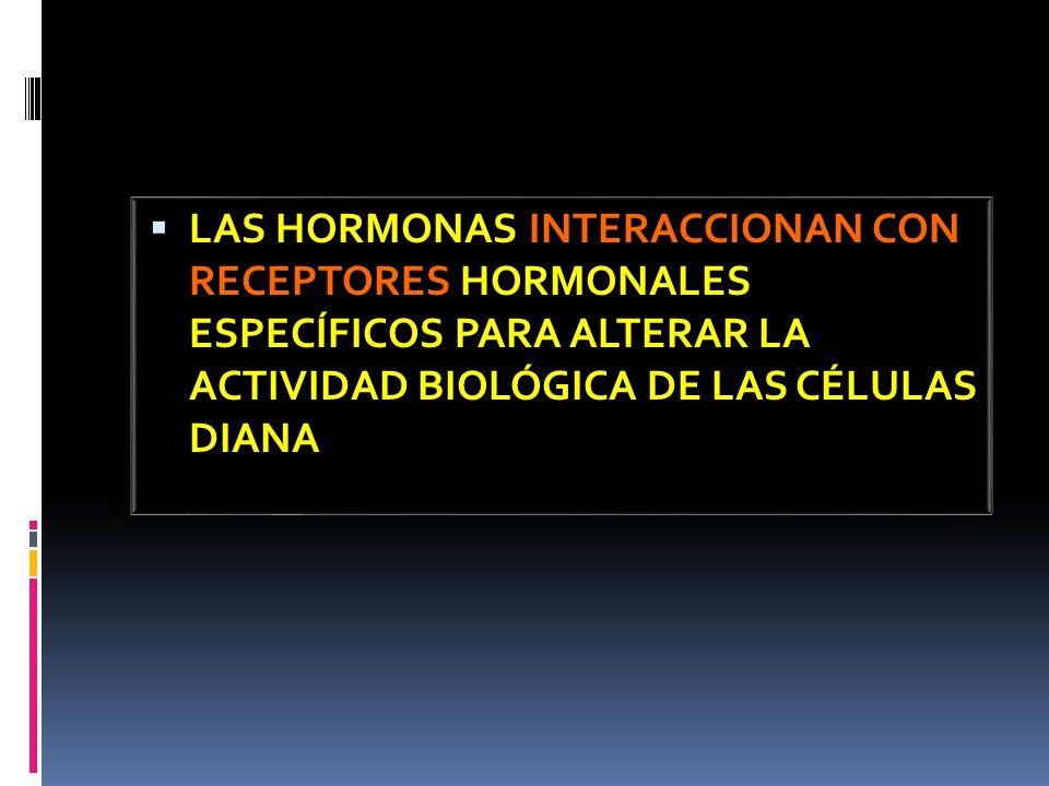 LAS HORMONAS INTERACCIONAN CON RECEPTORES HORMONALES ESPECÍFICOS PARA ALTERAR LA ACTIVIDAD BIOLÓGICA DE LAS CÉLULAS DIANA