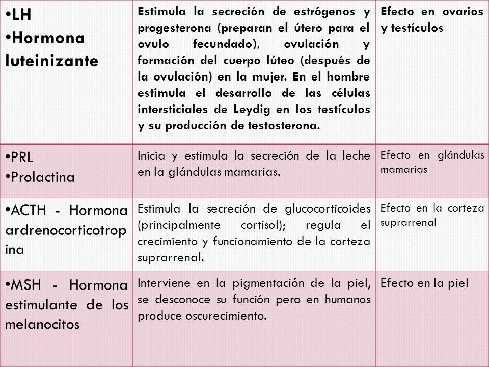 LH Hormona luteinizante PRL Prolactina