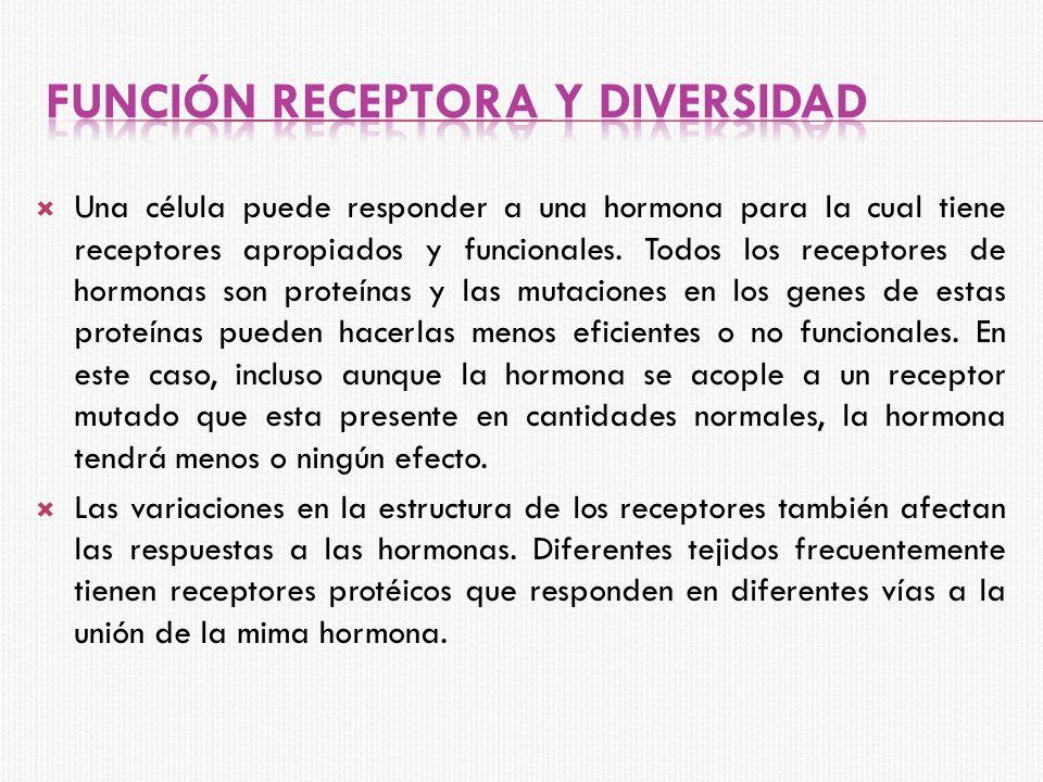 Función receptora y diversidad