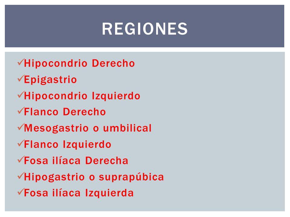 Regiones Hipocondrio Derecho Epigastrio Hipocondrio Izquierdo