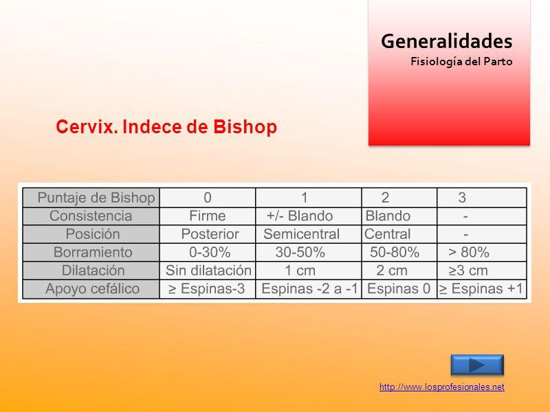 Generalidades Cervix. Indece de Bishop Fisiología del Parto