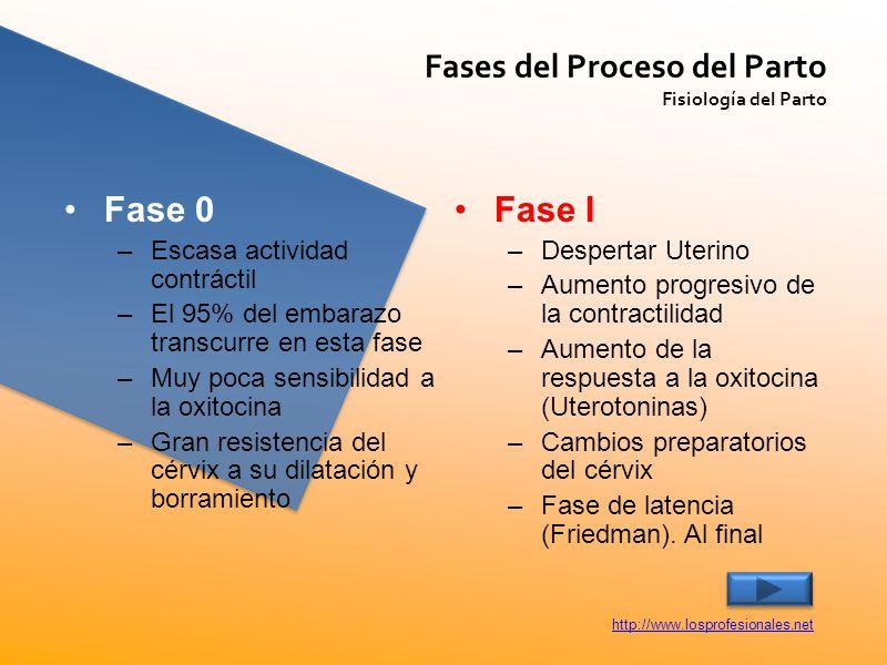 Fase 0 Fase I Fases del Proceso del Parto Escasa actividad contráctil