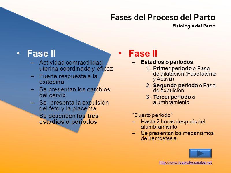 Fase II Fase II Fases del Proceso del Parto
