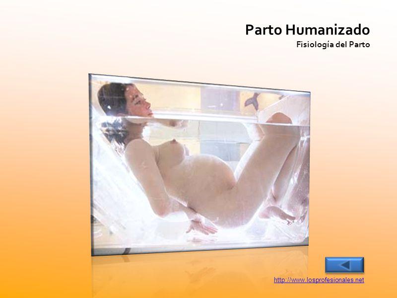 Parto Humanizado Fisiología del Parto http://www.losprofesionales.net