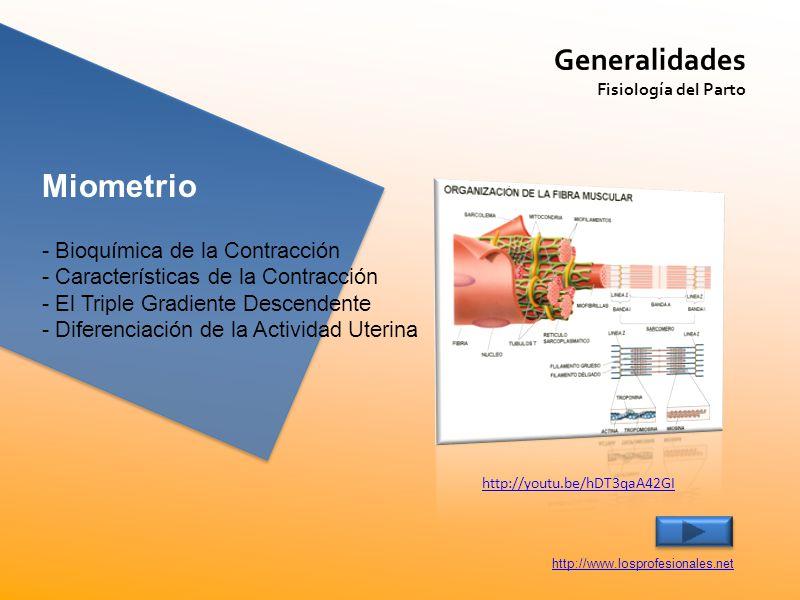 Miometrio Generalidades - Bioquímica de la Contracción