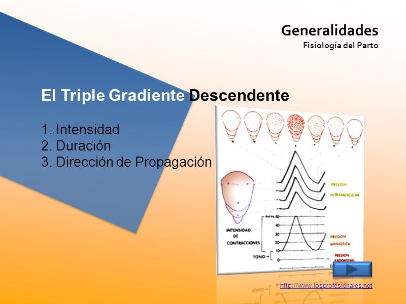 El Triple Gradiente Descendente