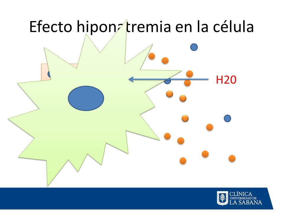 Efecto hiponatremia en la célula