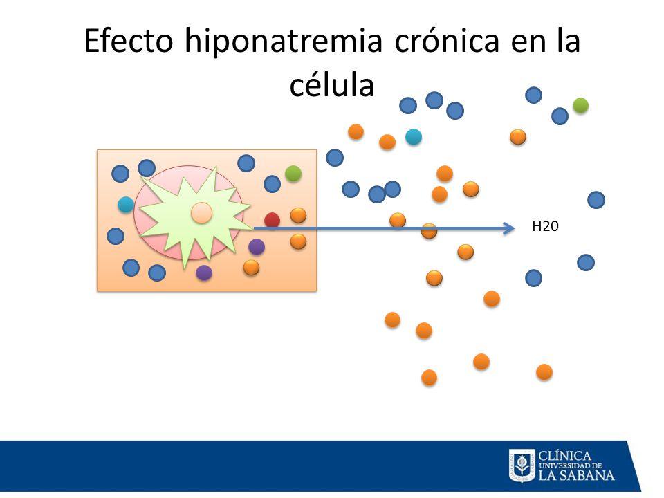 Efecto hiponatremia crónica en la célula