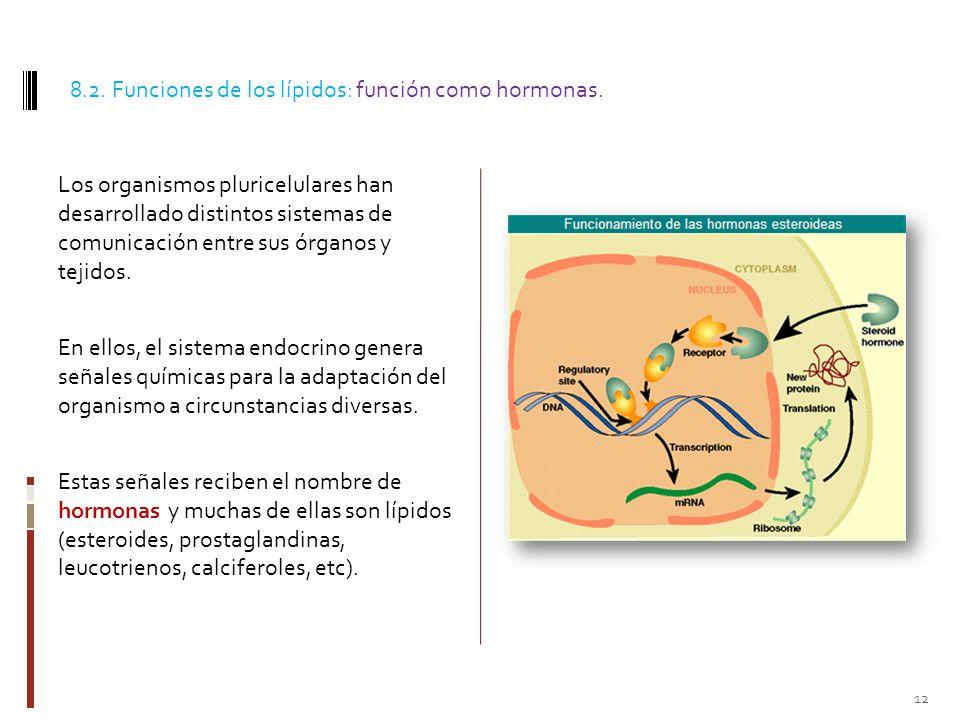 8.2. Funciones de los lípidos: función como hormonas.