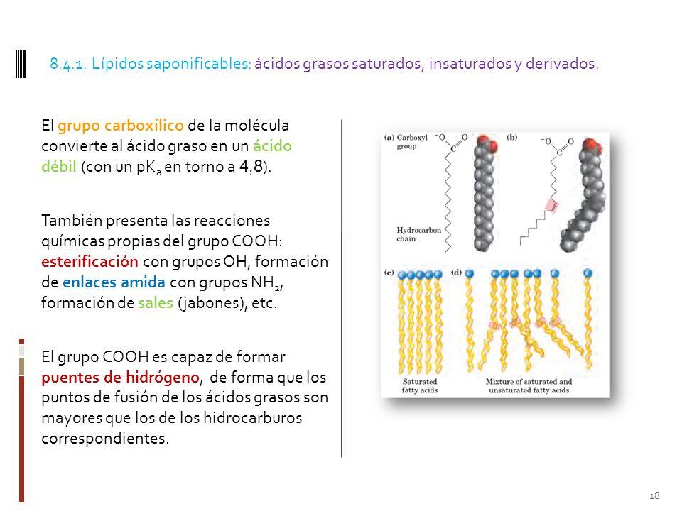 8.4.1. Lípidos saponificables: ácidos grasos saturados, insaturados y derivados.