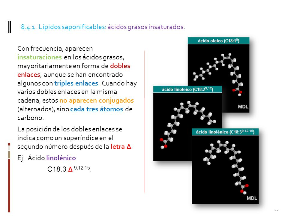 8.4.1. Lípidos saponificables: ácidos grasos insaturados.