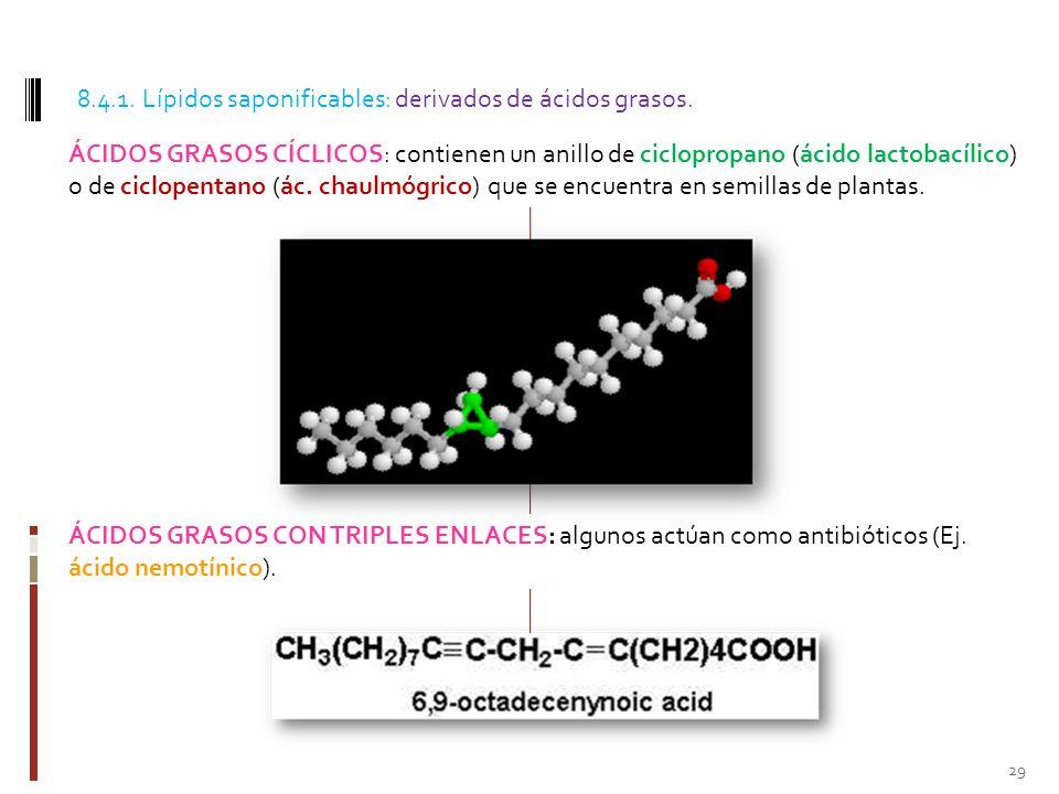 8.4.1. Lípidos saponificables: derivados de ácidos grasos.