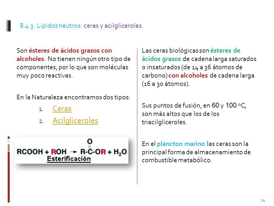 Ceras Acilgliceroles 8.4.3. Lípidos neutros: ceras y acilgliceroles.