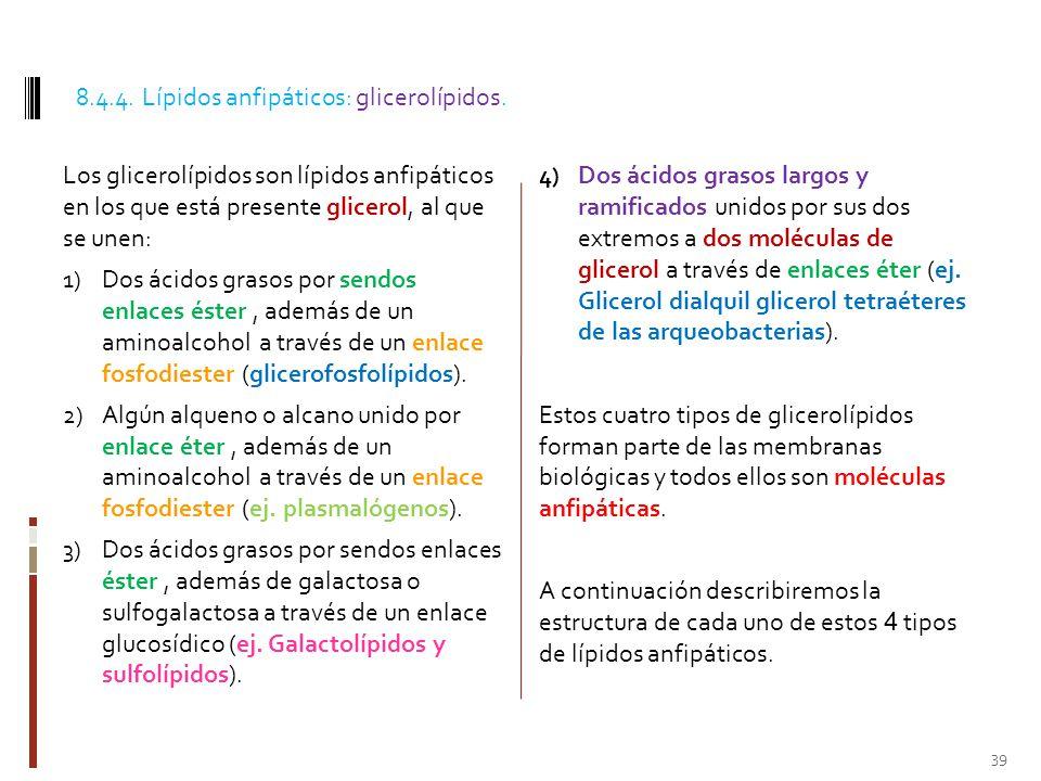 8.4.4. Lípidos anfipáticos: glicerolípidos.