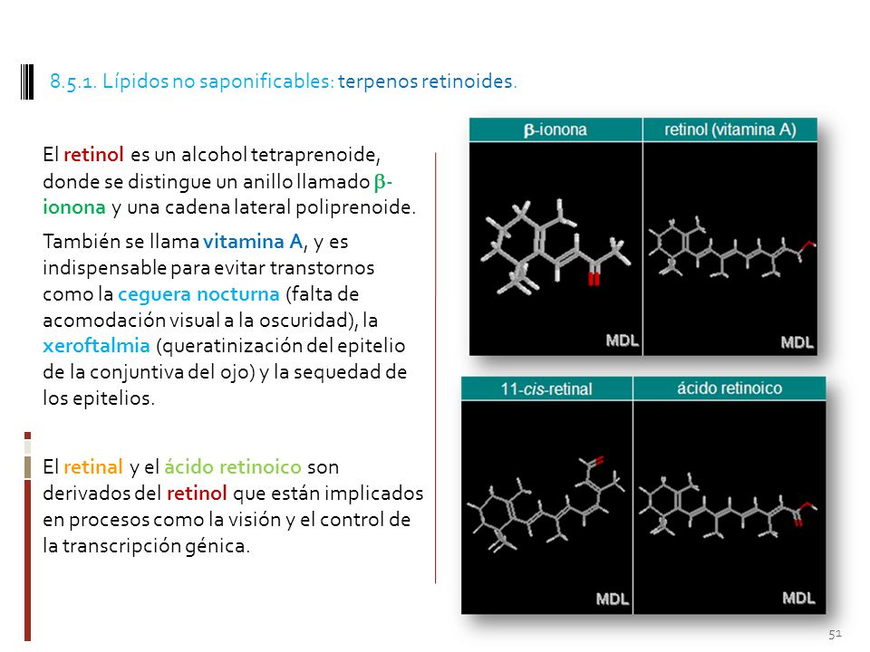 8.5.1. Lípidos no saponificables: terpenos retinoides.