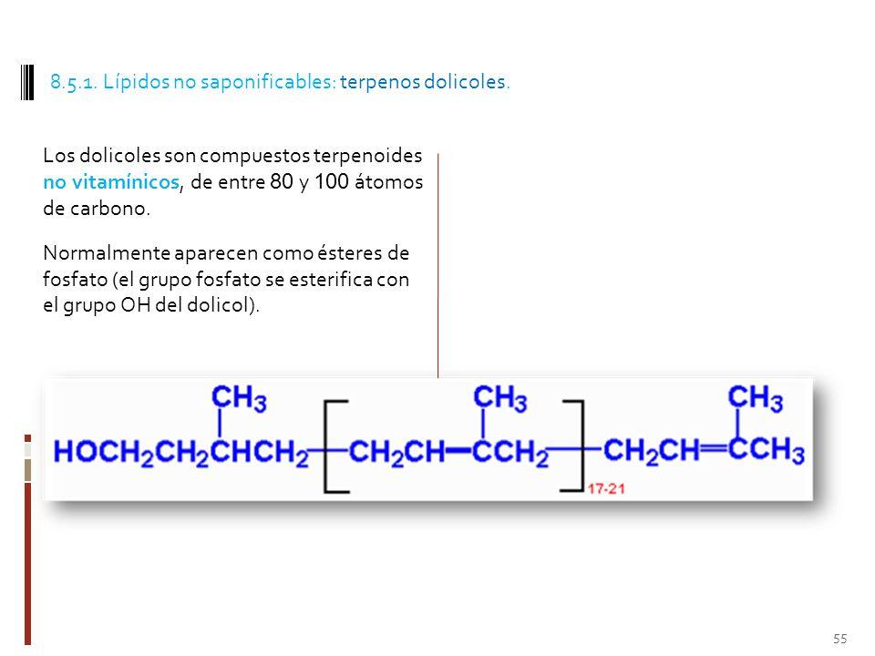8.5.1. Lípidos no saponificables: terpenos dolicoles.