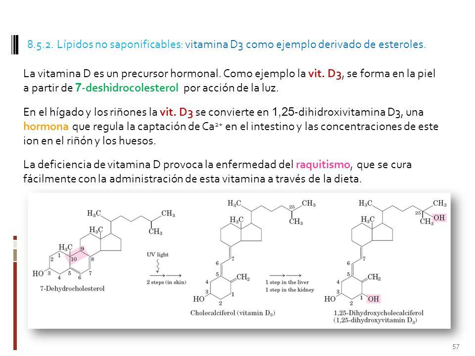 8.5.2. Lípidos no saponificables: vitamina D3 como ejemplo derivado de esteroles.