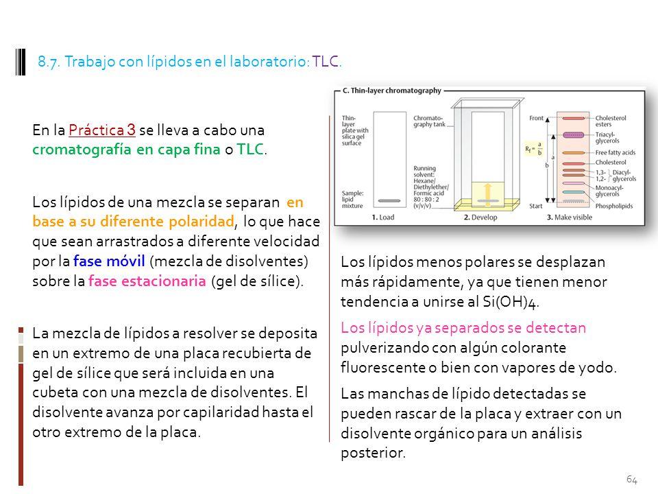 8.7. Trabajo con lípidos en el laboratorio: TLC.