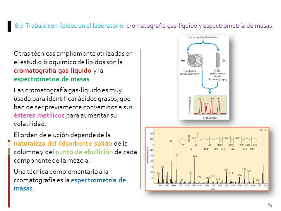 8.7. Trabajo con lípidos en el laboratorio: cromatografía gas-líquido y espectrometría de masas.