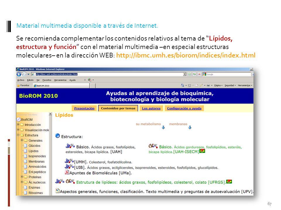 Material multimedia disponible a través de Internet.