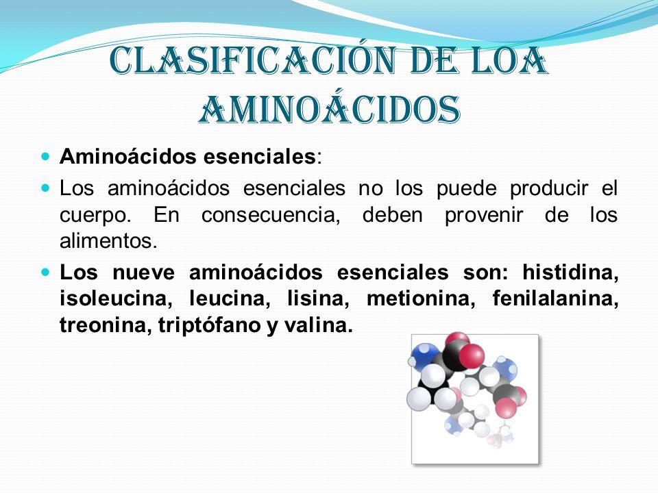 Clasificación de loa aminoácidos