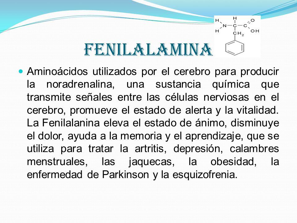 fenilalamina