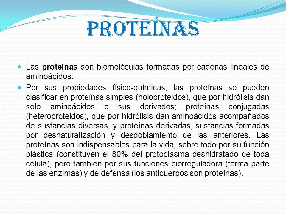 Proteínas Las proteínas son biomoléculas formadas por cadenas lineales de aminoácidos.