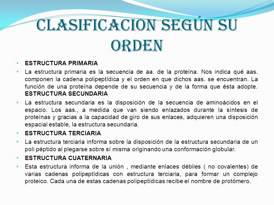 CLASIFICACION SEGÚN SU ORDEN