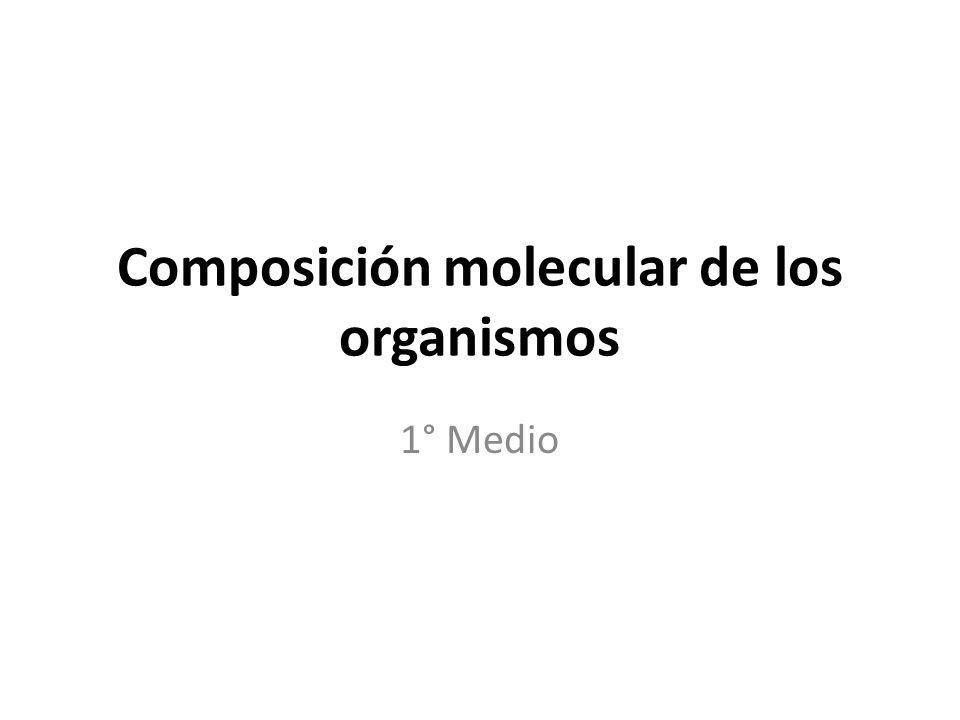 Composición molecular de los organismos