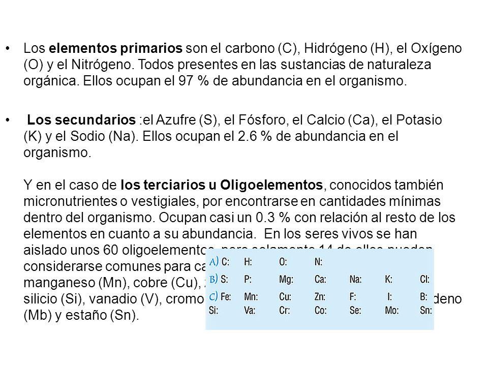 Los elementos primarios son el carbono (C), Hidrógeno (H), el Oxígeno (O) y el Nitrógeno. Todos presentes en las sustancias de naturaleza orgánica. Ellos ocupan el 97 % de abundancia en el organismo.