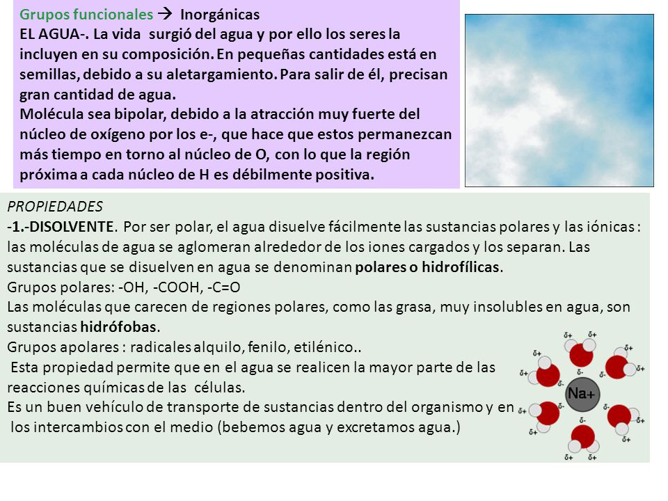 Grupos funcionales  Inorgánicas EL AGUA-
