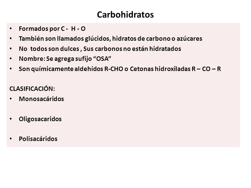Carbohidratos Formados por C - H - O
