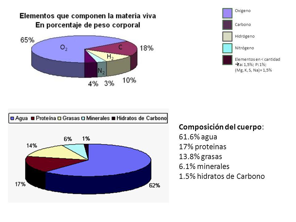 Oxigeno Carbono. Hidrógeno. Nitrógeno. Elementos en < cantidad. Ca: 1,5%; P: 1%; (Mg, K, S, Na)= 1,5%