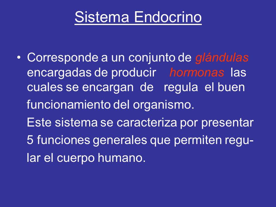 Sistema Endocrino Corresponde a un conjunto de glándulas encargadas de producir hormonas las cuales se encargan de regula el buen.