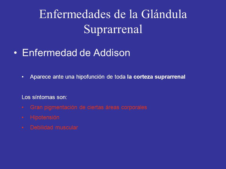 Enfermedades de la Glándula Suprarrenal