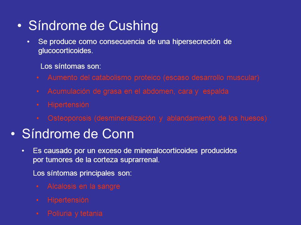 Síndrome de Cushing Síndrome de Conn