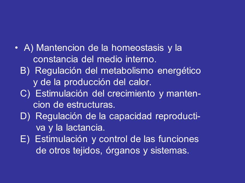 A) Mantencion de la homeostasis y la