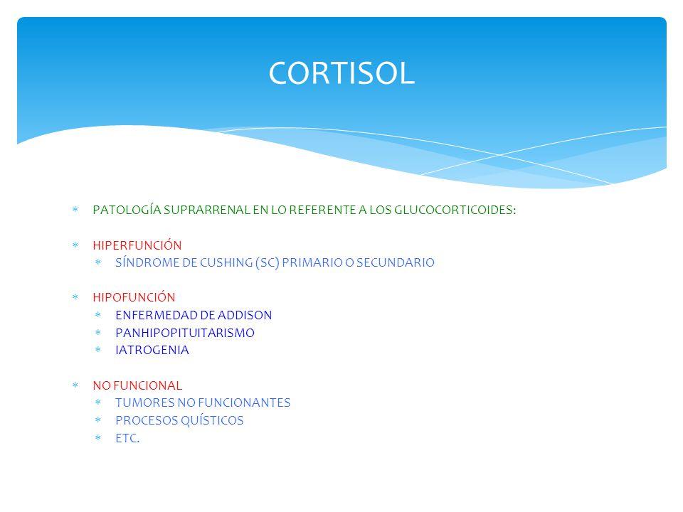 CORTISOL PATOLOGÍA SUPRARRENAL EN LO REFERENTE A LOS GLUCOCORTICOIDES: