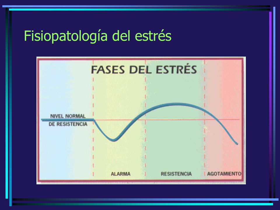 Fisiopatología del estrés