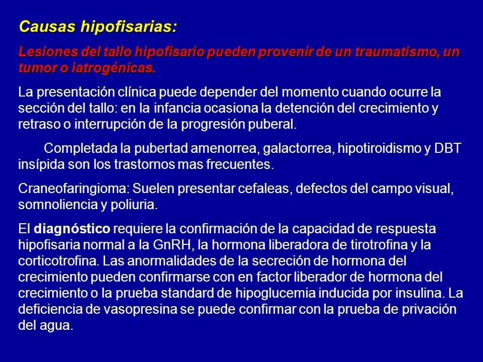 Causas hipofisarias: Lesiones del tallo hipofisario pueden provenir de un traumatismo, un tumor o iatrogénicas.