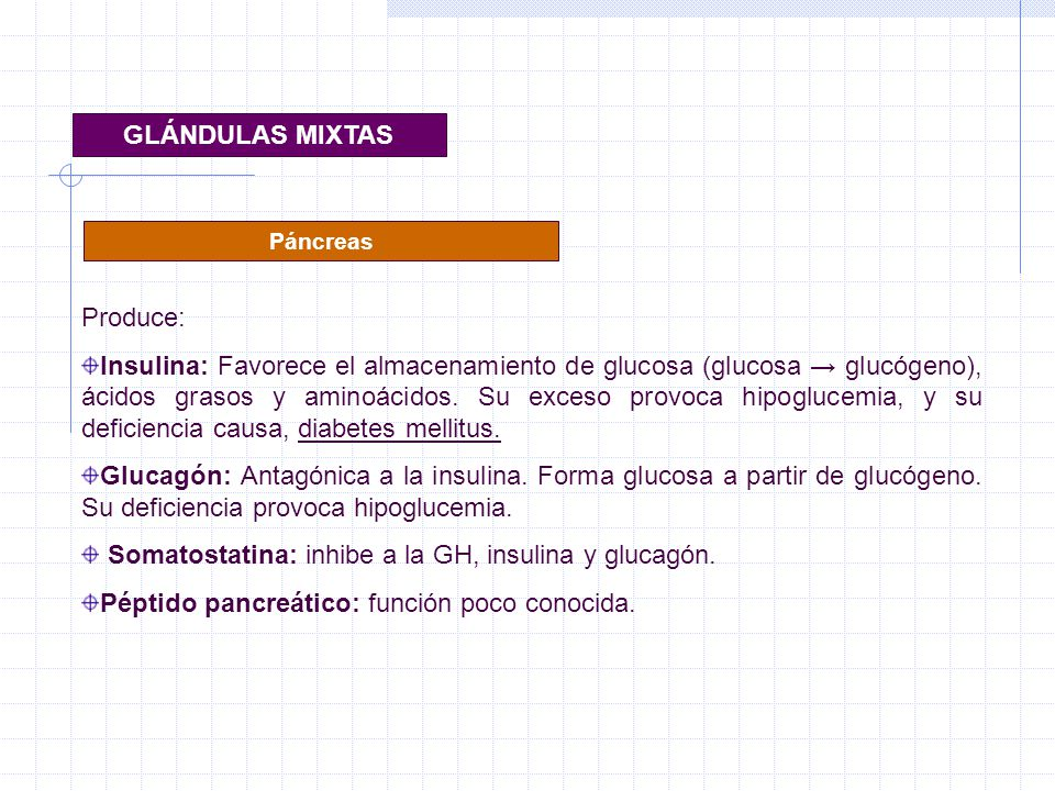 Somatostatina: inhibe a la GH, insulina y glucagón.