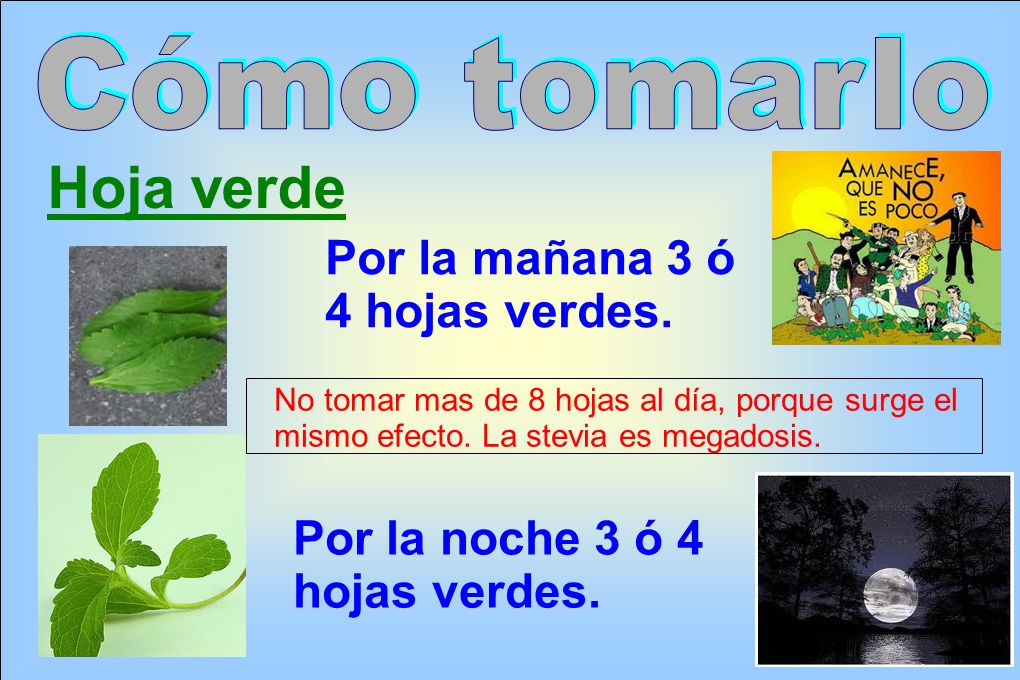 Hoja verde Cómo tomarlo Por la mañana 3 ó 4 hojas verdes.