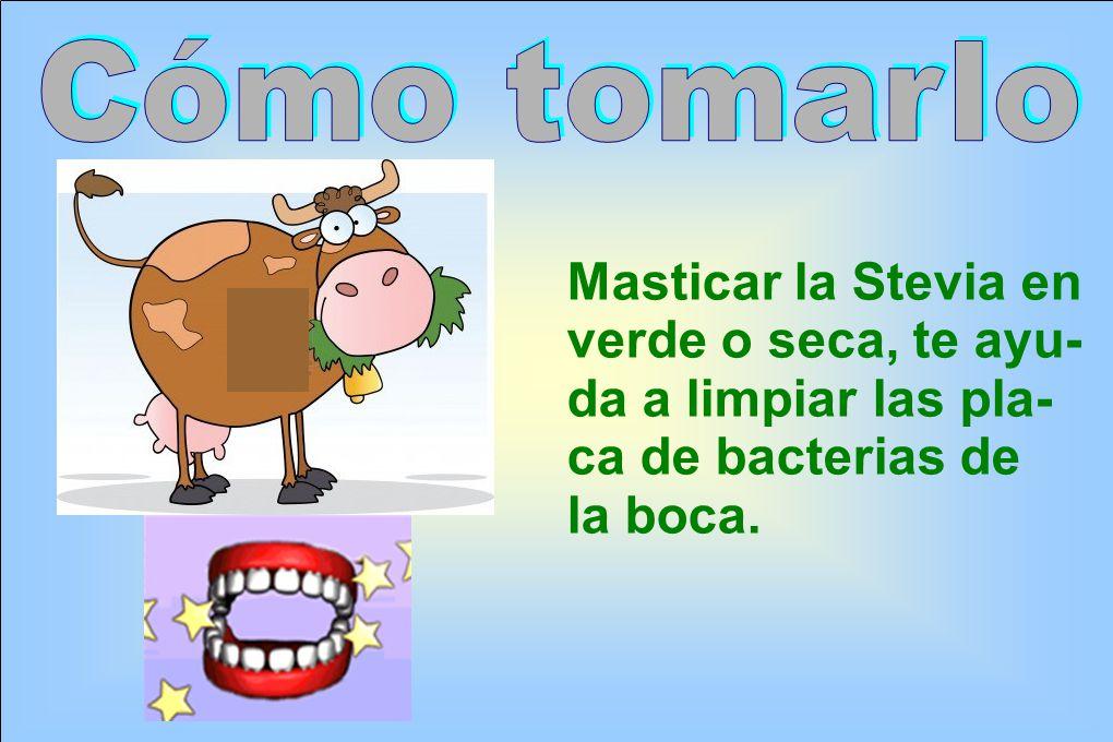 Cómo tomarlo Masticar la Stevia en. verde o seca, te ayu- da a limpiar las pla- ca de bacterias de.