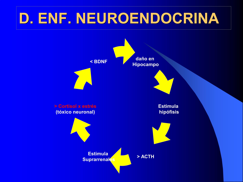 D. ENF. NEUROENDOCRINA