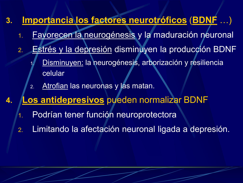 Importancia los factores neurotróficos (BDNF …)